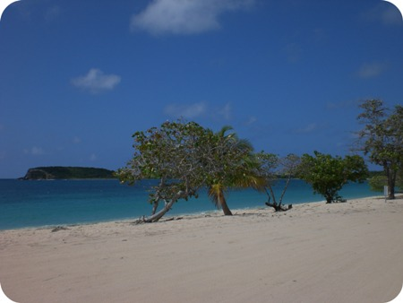 vieques_3