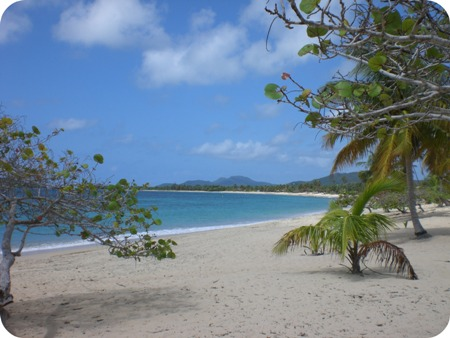 vieques_4