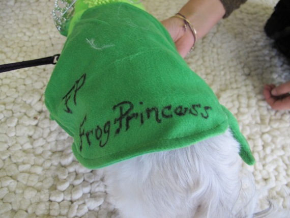 frogprincess