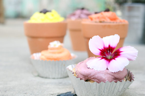 Post image for Coconut, Oatmeal, and Raisin Flower Cupcakes
