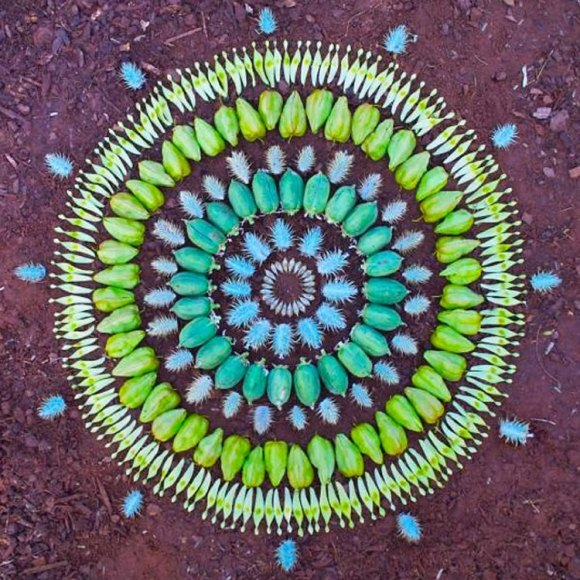 Post image for Flower Mandalas by Kathy Klein
