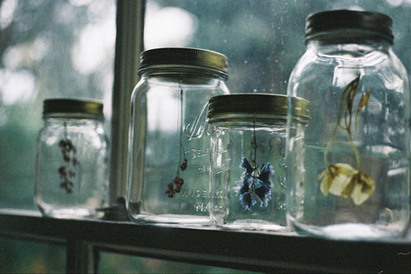 Hanging Flower Mason Jars