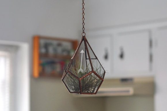Hanging Geometric Airplant Terrarium