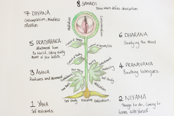 the eight limbs of yoga and what they mean