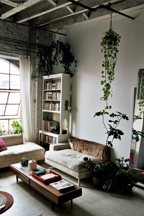 my fall home d cor inspiration