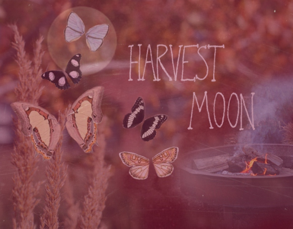 Post image for Playlist: Harvest Moon