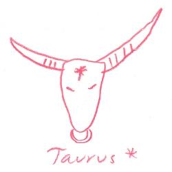 taurus star sign illustration