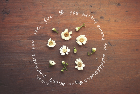 Post image for Monday Quote: Among The Wildflowers