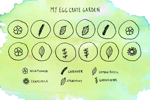 garden chart illustration