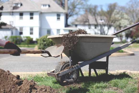 Dirt in wheelbarrow