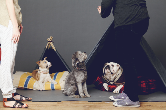 Free People Pet Project photo shoot