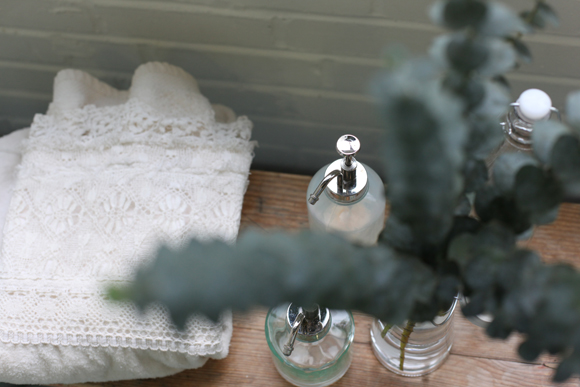 Glass bottles, towel, and eucalyptus