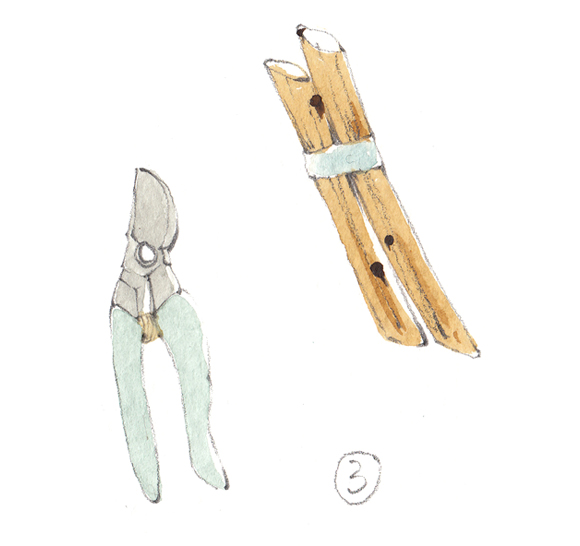 Garden tool illustration