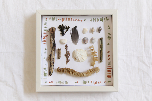 Beach specimen shadow box