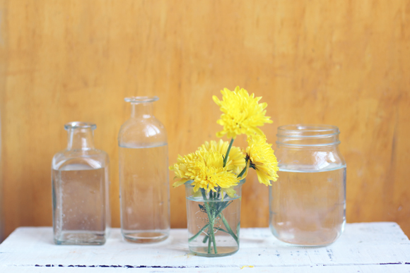 Glass bottles, yellow flower
