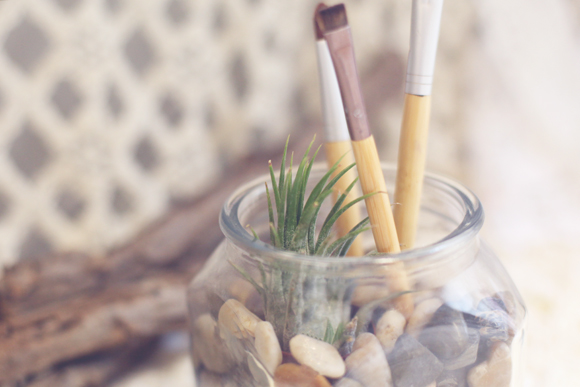 Makeup brushes, rocks, air plant