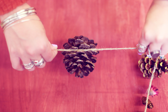 Pinecone and twine