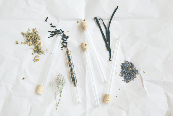 Test tubes and dried flowers