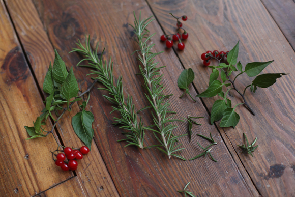 Berries and evergreens