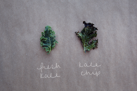 Fresh kale, kale chip