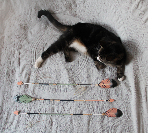 Cat, painted feather arrows