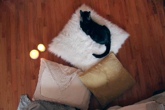Cat, pillows, candles