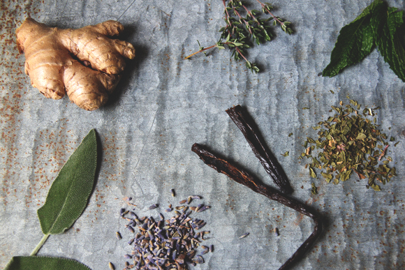 different herbs and spices