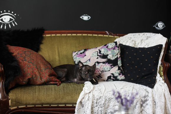 Eye wall, vintage couch, dog