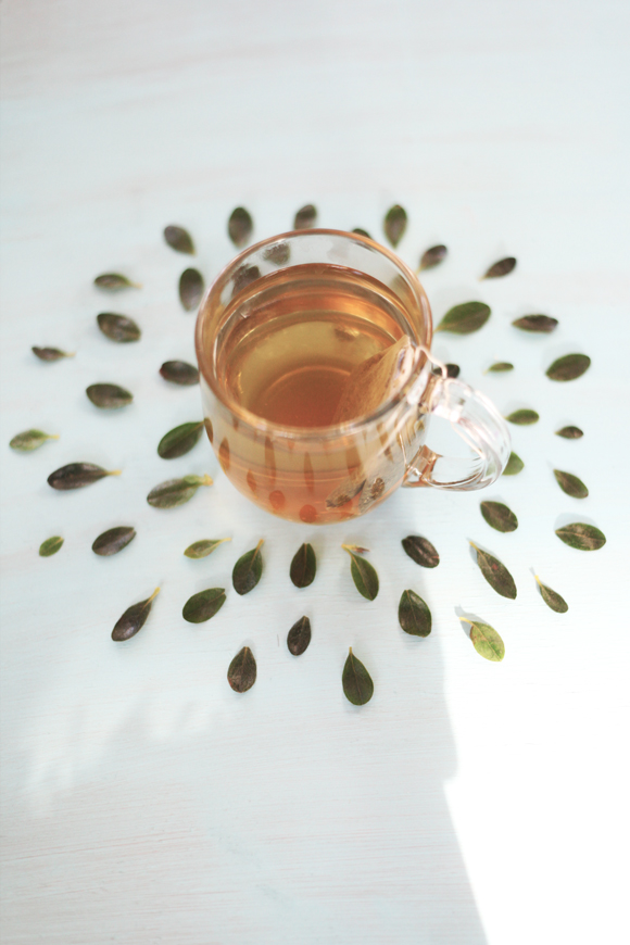 Green tea, green leaves