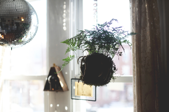 Hanging kokedama plant, disco ball