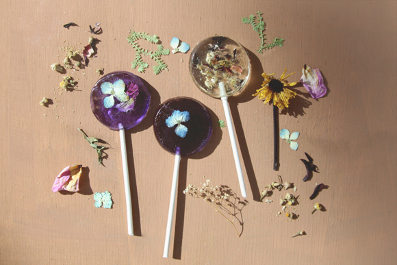 Post image for Homemade Pressed Flower Lollipops