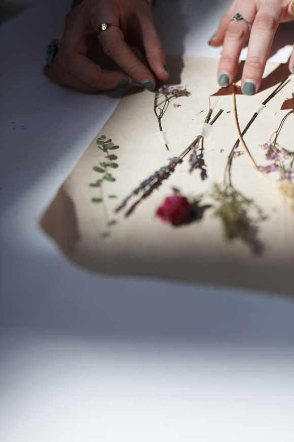 Aged paper with dried flowers