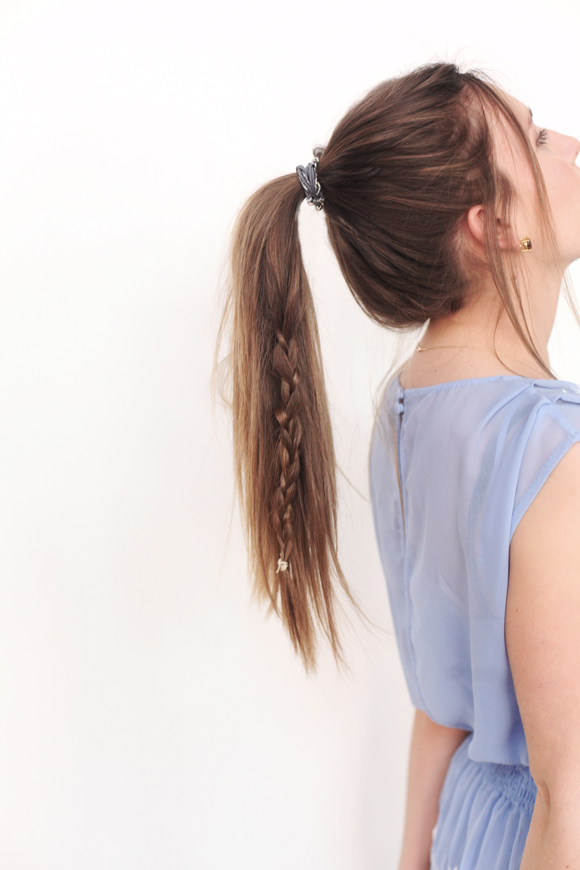 Braid, ponytail