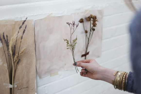 Dried flower on wall