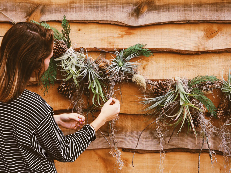 Thumbnail image for DIY Natural Holiday Garland With Terrain