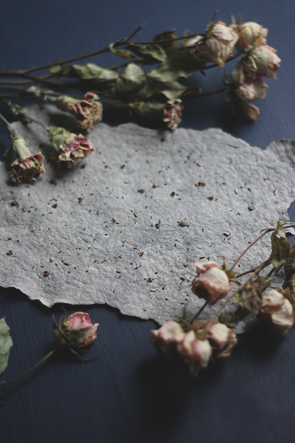 Post image for How to Make Plantable Seed Paper