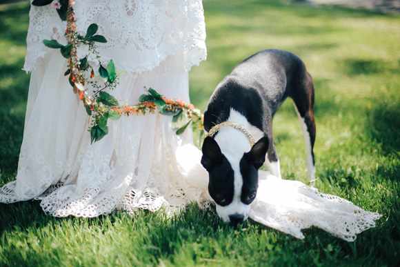 Post image for Pup of Honor: DIY Bridal Dog Leash
