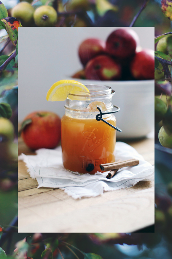 Post image for Fall's Perfect Cocktail: Apple Cider, Cardamom & Chicory Spirits