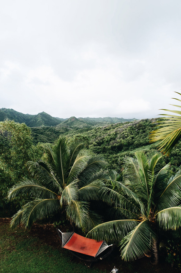 Post image for A Home Away From Home: The Palmwood in Kauai with Cult Collective