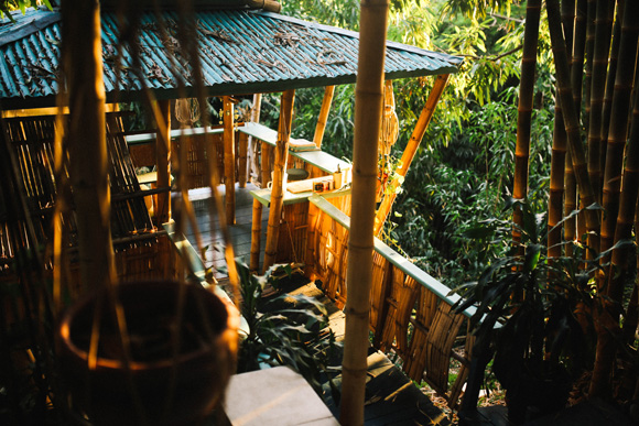 Post image for Explore: Puerto Rican Treehouses Atop A Bamboo Labyrinth