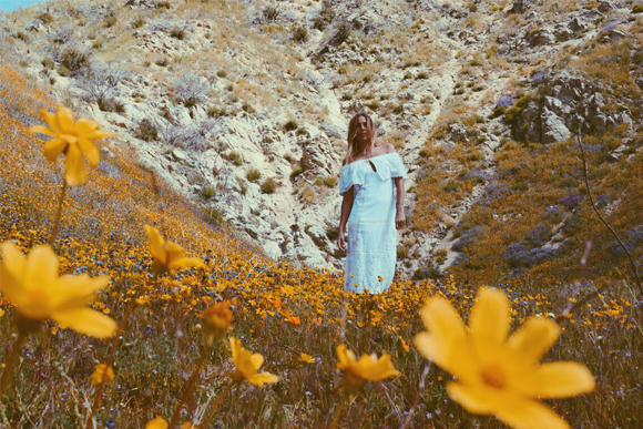 Post image for Among the Wildflowers