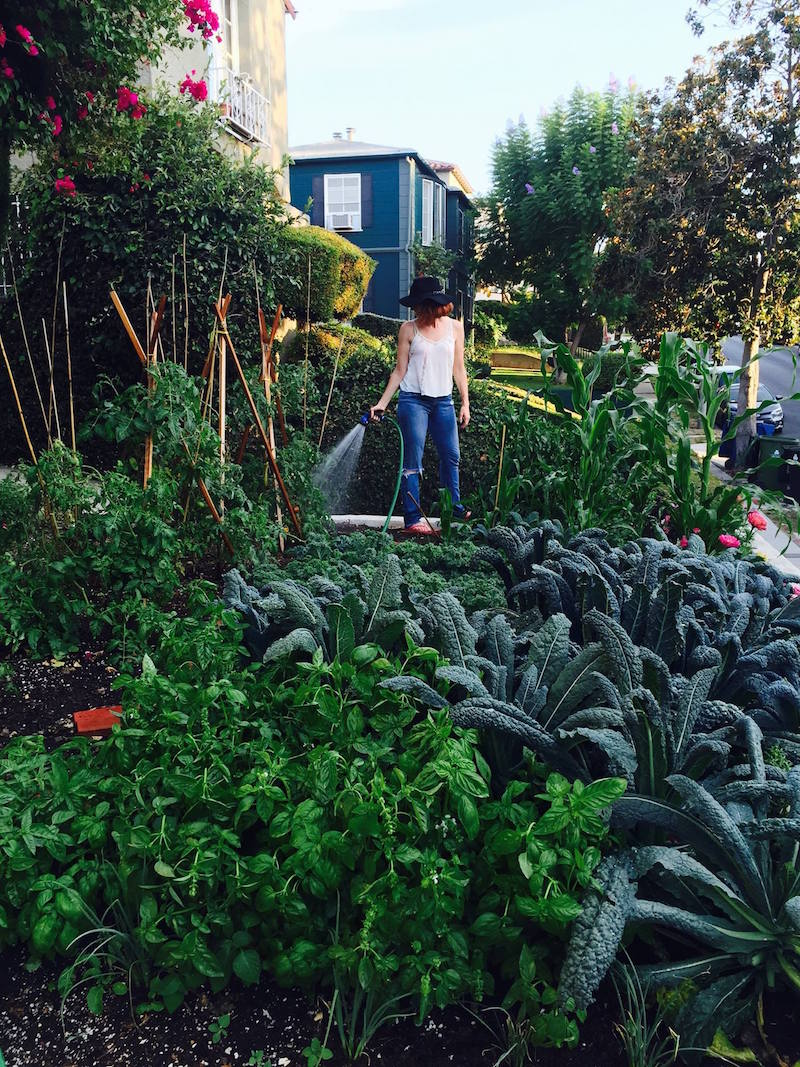 Post image for The Apartment Garden: 10 Tips on How to Get Started + What to Plant
